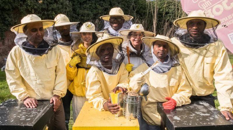Bee My Job: accoglienza, formazione e lavoro in Piemonte, Emilia Romagna e Calabria