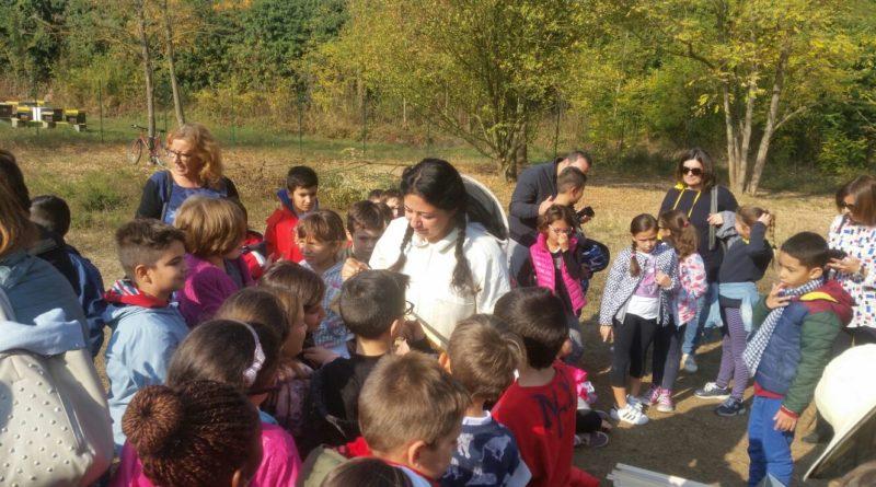 """Apididattica con Bee My Job per inaugurare """"Think Green- Amico Albero"""" al Forte Acqui"""