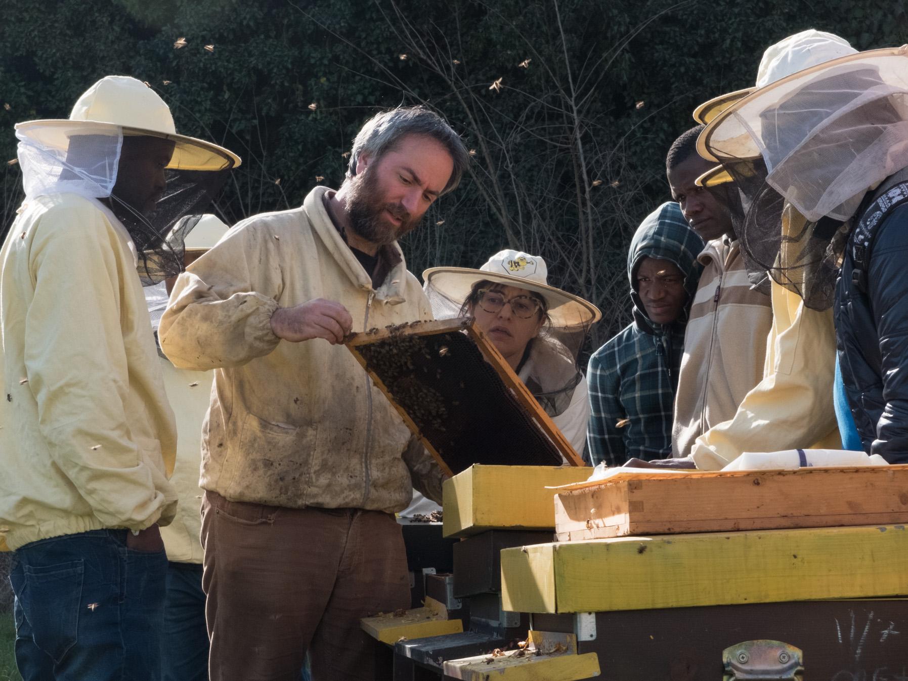 """Bee My Job 2.0"": attivati 24 nuovi tirocini"