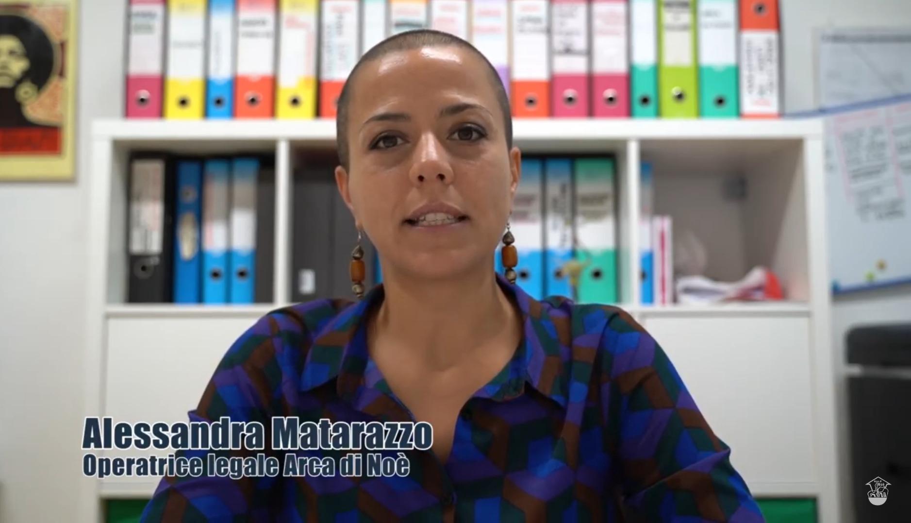 CORONAVIRUS. Informativa sulla Sanatoria 2020 – video e materiali di Arca di Noè