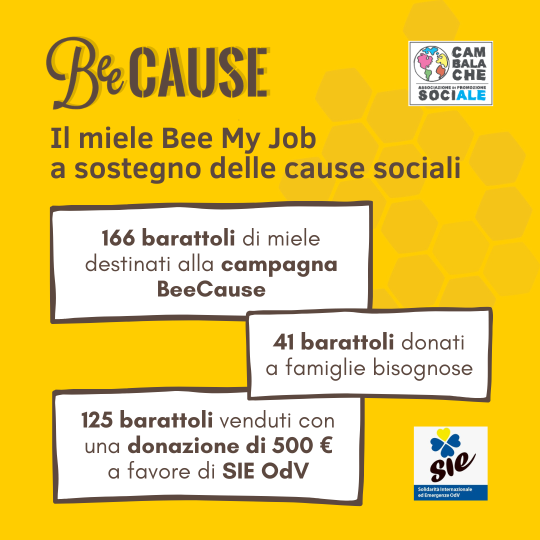 Gli aiuti del miele Bee My Job alle cause sociali